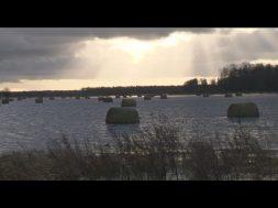 Ziru pagastā slēdz autoceļus plūdu dēļ
