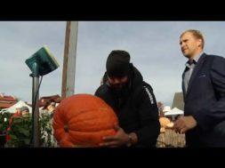 Ventspils tirgus laukumā ķirbju šovs