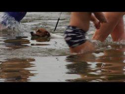 Ziemas peldētāju sezonas atklāšana Būšnieku ezerā
